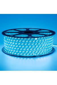 Лед лента 220В синяя smd 2835 120led/м 12Вт/м IP65, 1м