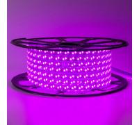 Лед лента 220В фиолетовая smd 2835 120led/м 12Вт/м IP65, 1м