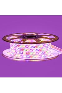 Лед лента Multi-Color 220В smd 2835 180led/м 10Вт/м IP65, 1м